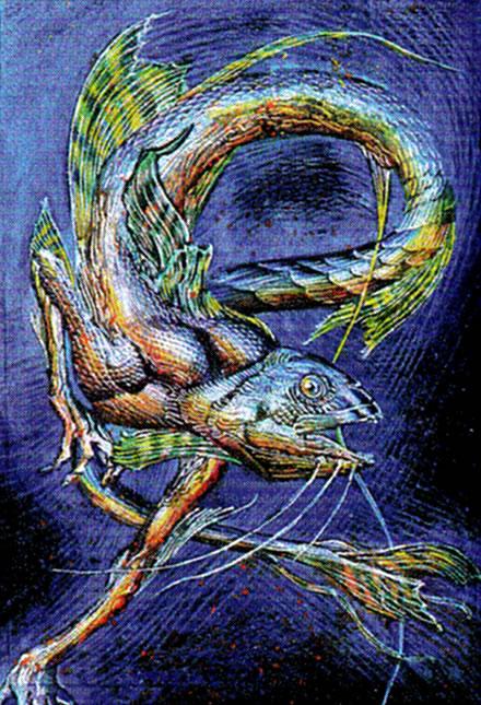 Vuvaku Art